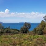 Land for sale in Vlora